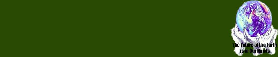wp-green