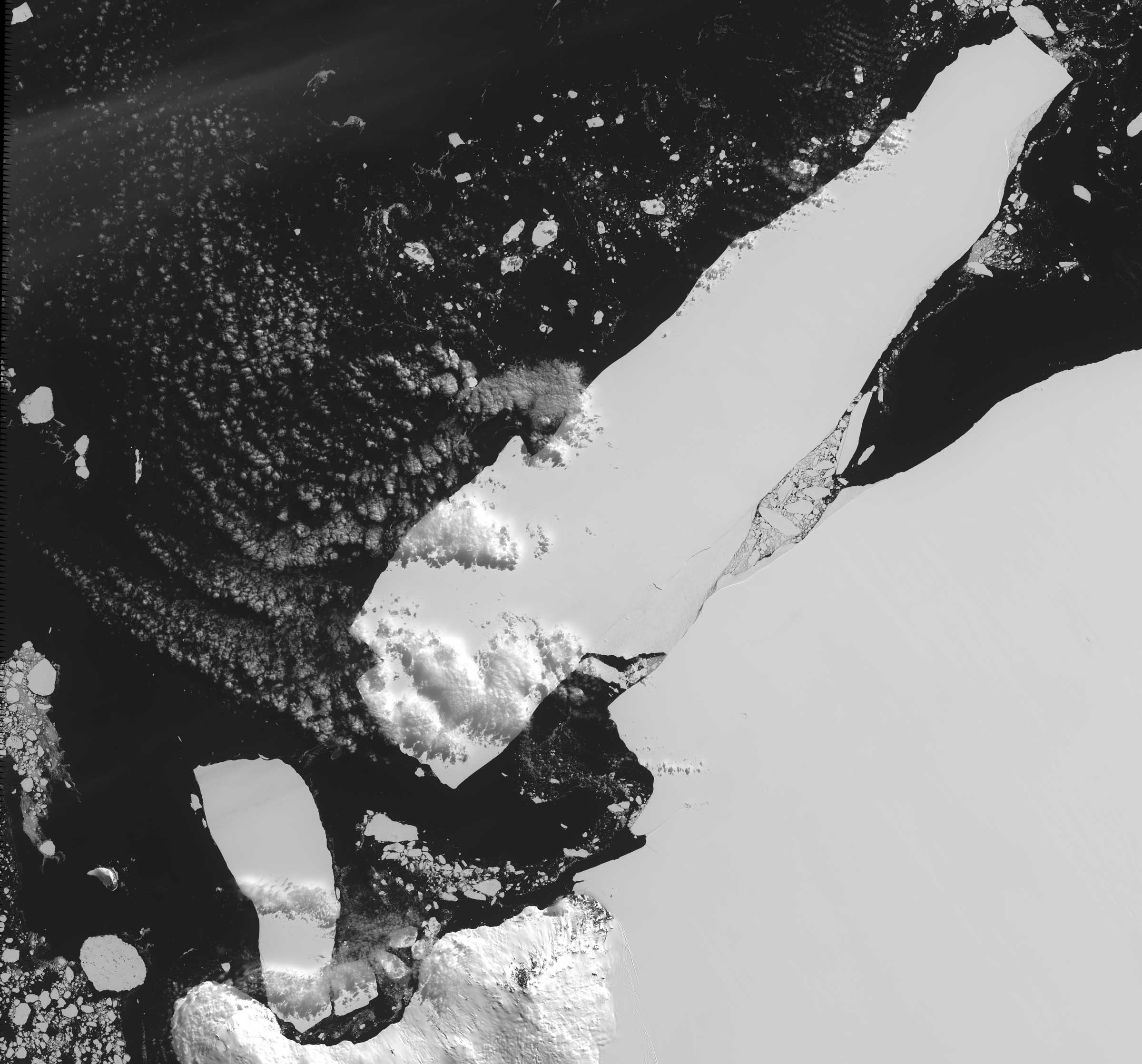 An iceberg that calved off Iceberg B-15 caused extensive pack ice buildup in McMurdo Sound, blocking shipping and preventing penguin access to open water.